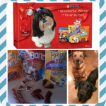 Purina's Wonderfur Winter Contest