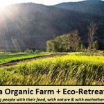 Athena Organic Farm + Eco-Retreat – What is on your table