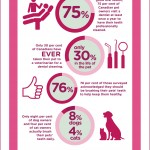 Dental health and your Pet #DentalPetFacts