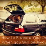 How to Prepare Your Dog When you Will be Away #TTOT